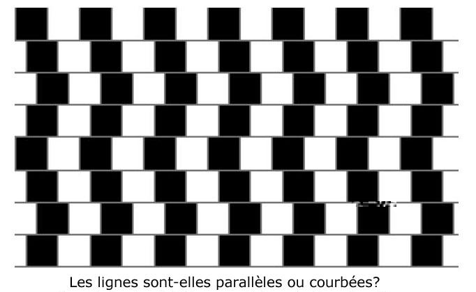 Les lignes et l'illusion Lignes%20paralleles